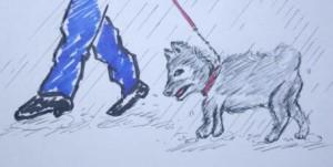 犬雨にぬられ